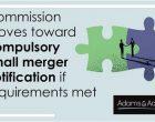 small merger notification